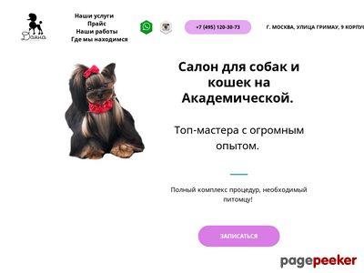 dayanagroom.ru