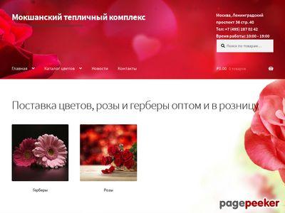 mokshanrose.ru