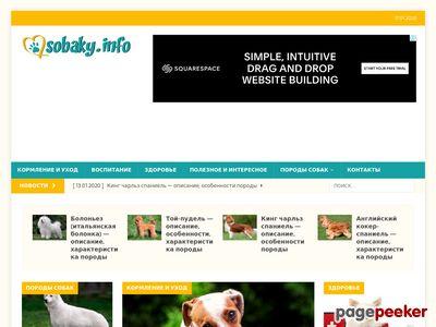sobaky.info